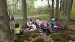 Vyučování v lese